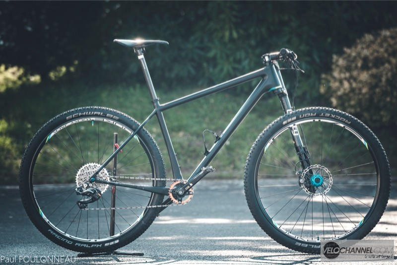 bike-check-open-lefty-dukeschwalbe