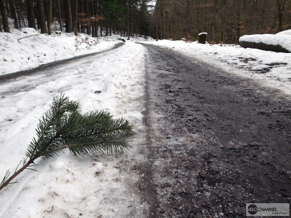 branche, neige et bitume
