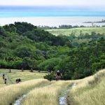 nwm-ile-maurice-mauritius-tour-beachcomber