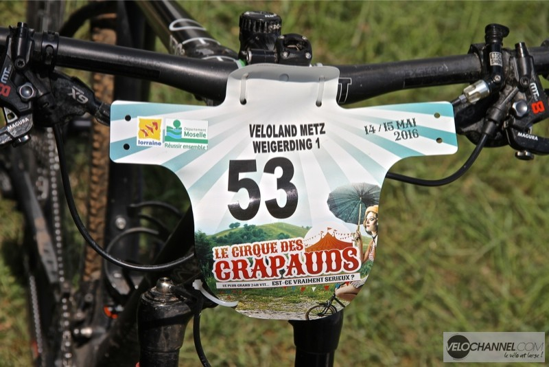 cirque-crapauds-veloland-metz-plaque
