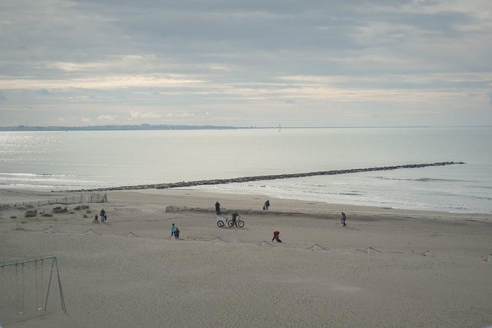 nwm-ecodunes-action-plage-delta-rhone-camargue