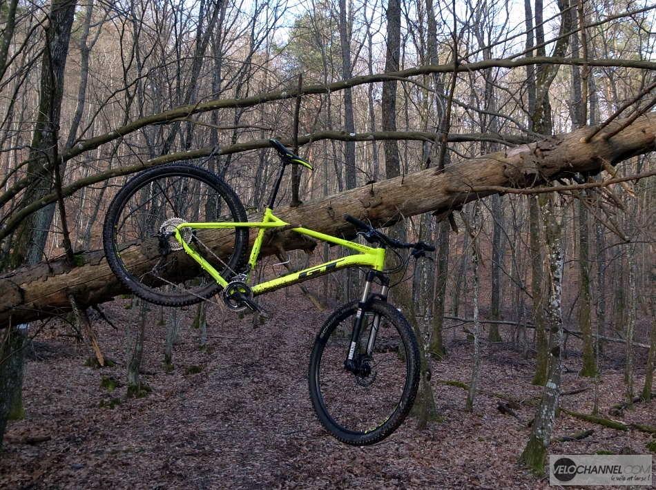 GT Zaskar Elite 9r accroché à un arbre