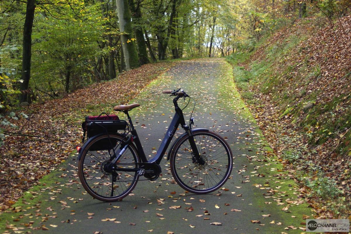 O2Feel Swan Di2 sur une piste cyclable à l'automne