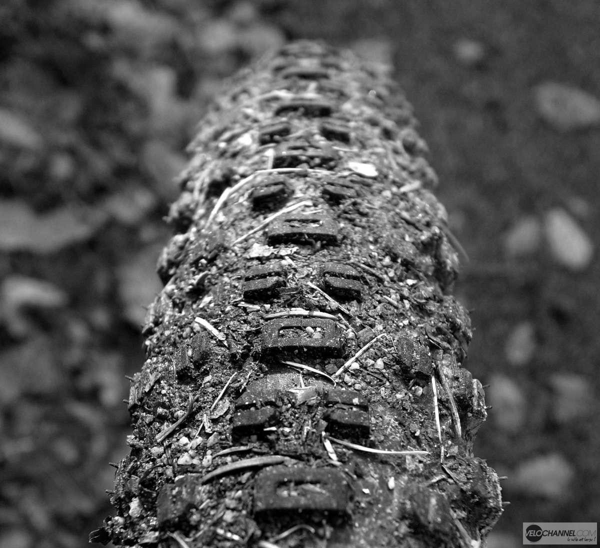 crampons du pneu WTB Ranger