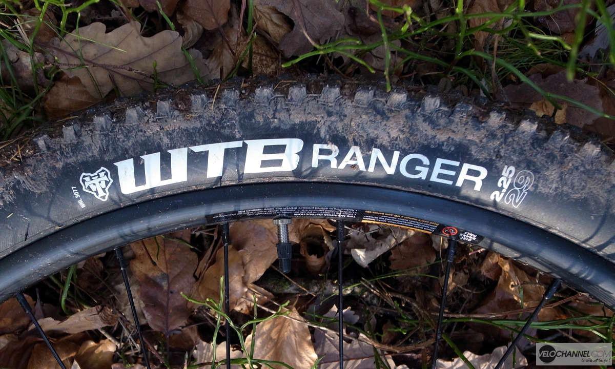 pneu WTB Ranger 29x2.25 dans les feuilles mortes